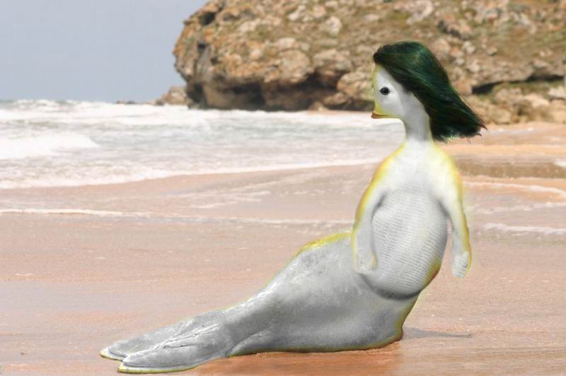 фото русалки настоящей